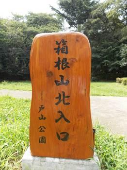戸山公園 箱根山-1.jpg