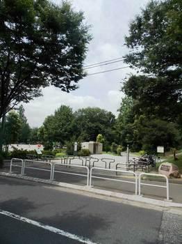 戸山公園 箱根山-11.jpg