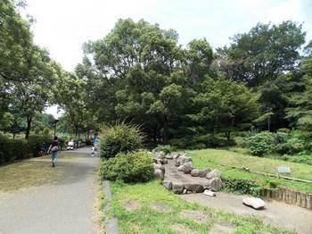 戸山公園 箱根山-14.jpg