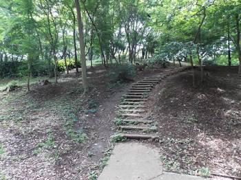 戸山公園 箱根山-3.jpg