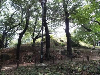 戸山公園 箱根山-4.jpg