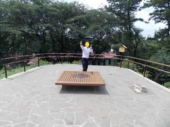 戸山公園 箱根山-7.jpg