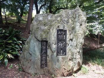 戸山公園 箱根山-9.jpg