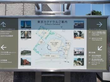 東京カテドラル関口協会-4.jpg